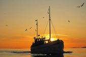 Fiskebåt i solnedgång, Bohuslän