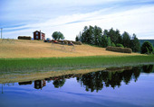 Lantgård vid sjö