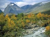 Fjällbäck vid Kebnekajse, Lappland