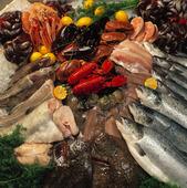Fiskar och skaldjur