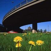 Viadukt, Göteborg