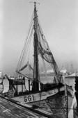 Fiskebåt i Göteborgs hamn, 1960 talet