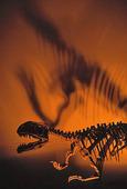 Dinosaurieskelett