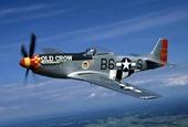 Veteranflygplan, Mustang