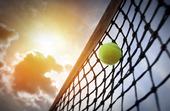 Tennisboll i tennisnät