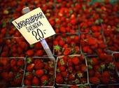Prisskylt vid jordgubbar