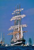 Kruzenshtern, Tall Ships Race