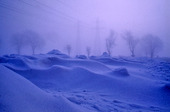 Vinterlandskap med kraftledningar i bakgrunden
