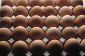 Bruna ägg
