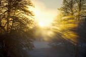 The last sunbeams.