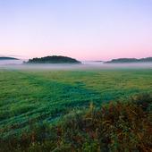 Landskap med morgondimma