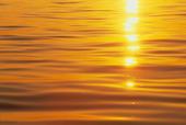 Solglitter på vattnet
