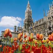 Marienplatz i München, Tyskland