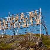 Långa på tork, Norge