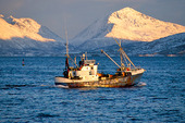 Fiskebåt i nordNorje