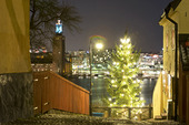 Julgran på Södermalm, Stockholm