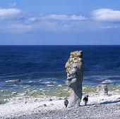 Rauk på Gotland