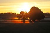 Solnedgång i naturen
