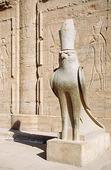 Falkguden Horus, Egypten