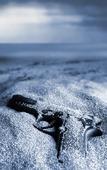 Pistol på sandstrand