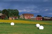 Jordbrukslandskap