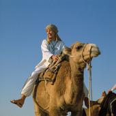 Flicka på kamel, Tunisien