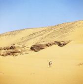 Kamelryttare i öken, Egypten
