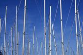 Båtmaster