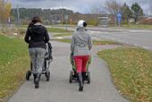 Mammor på promenad