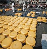 Cheese, Netherlands