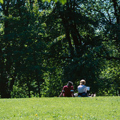 Tjejer i park
