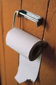 Toalettrulle på utedass
