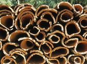 Bark från cork, Portugal