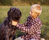 Pojke och hund