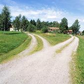 Grusväg som delar sig, Västmanland