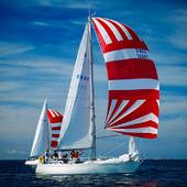 Segelbåtar med spinnaker