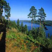 Naturlandskap, Dalsland