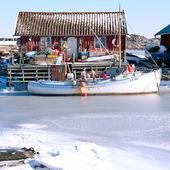 Fiskebåt vid sjöbod, Bohuslän