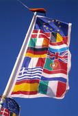 Internationell flagga