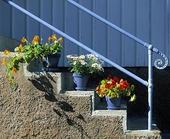 Blomkrukor på trappa