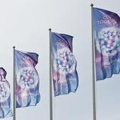 Eurovisionflaggor 2016