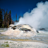 Grotto Geyser i Yellowstone Nationalpark, USA