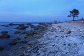 Kalkstenskust, Gotland