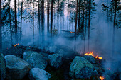 Anlagd hyggesbrand