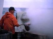 Fiskare kokar räkor