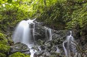 Vattenfall i regnskog, Filippinerna