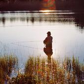 Fritidsfiskare i motljus