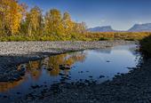 Torne Träsk i Abisko, Lappland
