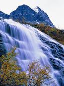 Fluafallet i Innerdalen, Norge