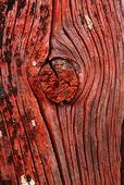 Mönster i trä